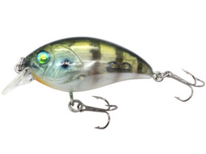 Damiki DISCO-40 4CM/4.6Gr (Floating) - 348T (Mysterious Gill)