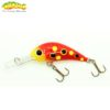 Gloog Parys 40N - 4cm/2.5gr (Floating) - L (Ladybug)