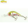 Gloog Parys 40N - 4cm/2.5gr (Floating) - TR1 (Trout Rainbow 1)
